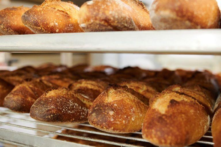 Orły Piekarnictwa – plebiscyt który pozwoli na wyłonienie najlepszej piekarni w Twoim mieście